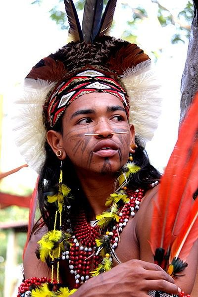índio pataxo