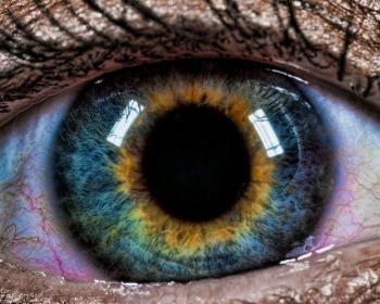 Sabia que existem pessoas de olhos violeta ou com duas cores diferentes? Veja 7 curiosidade sobre a cor dos olhos