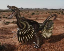 10 curiosidades para você descobrir como era o Velociraptor