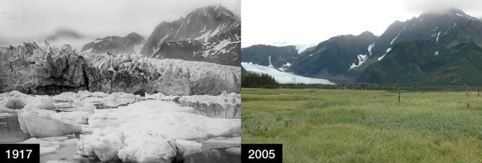 Glaciar Pedersen, Alasca
