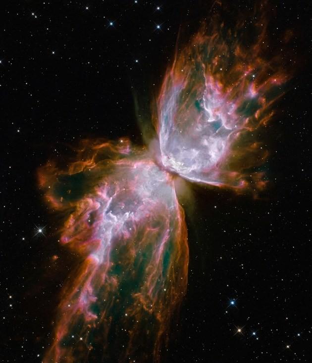 Nebulosa Borboleta