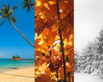Entenda as estações do ano pela inclinação da Terra ?