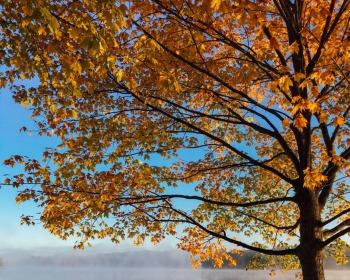 Equinócio de outono: o que é? Quando ocorre?