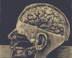 Fatos assustadores sobre a lobotomia
