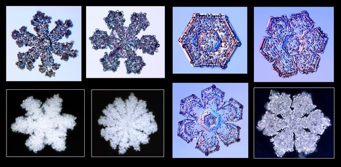 Flocos de neve rimados e Graupel 2_snowcrystals