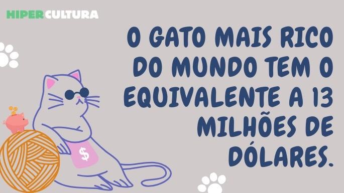 hipercultura-curiosidades-sobre-gatos-05