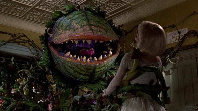 hipercultura-plantas-carnivoras-little-shop-of-horrors