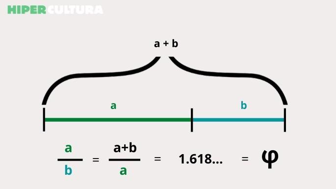hipercultura-proporção-áurea-01