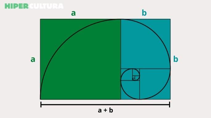 hipercultura-proporção-áurea-02