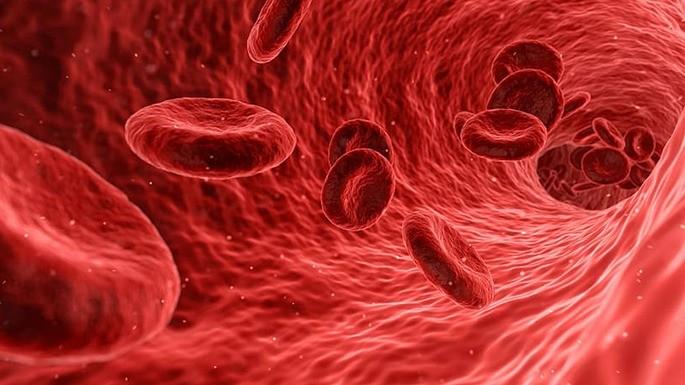 hipercultura-quantidade-de-sangue-01