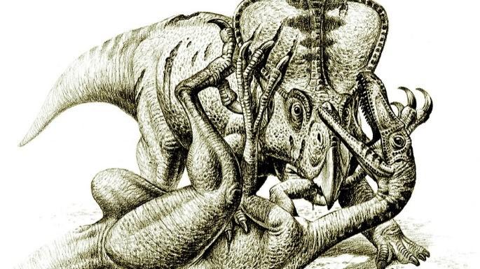 hipercultura-velociraptor-04
