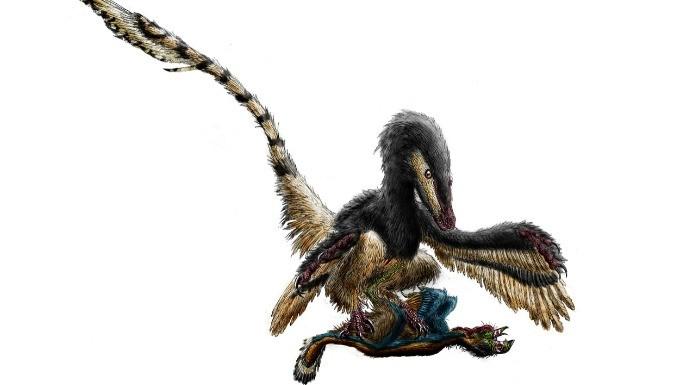 hipercultura-velociraptor-06