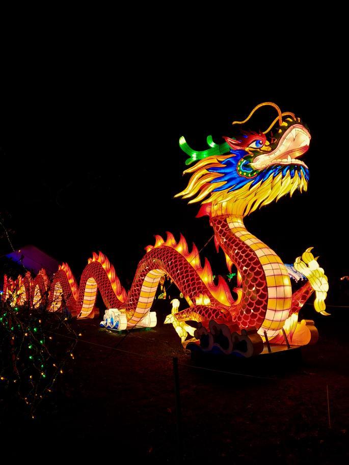 Dragão Chinês. UNSPLASH - Photo by Ridwan Meah on Unsplash