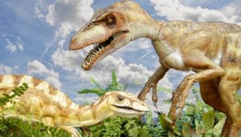 Você sabe como os dinossauros recebem os seus nomes?