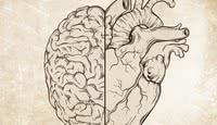 O que é e como desenvolver inteligência emocional