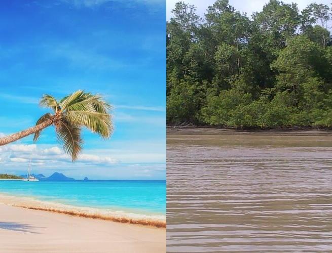 O sonho caribenho de praia X uma praia do Suriname ?♂️