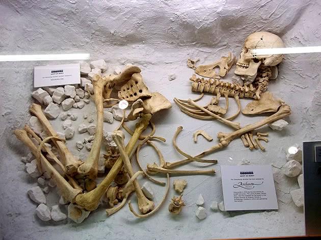 Museu Salisbury