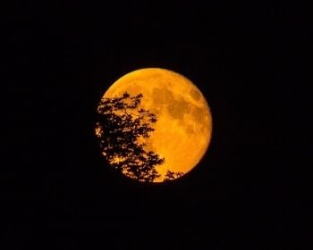 Superlua: Tudo que você precisa saber sobre a maior e mais brilhante lua