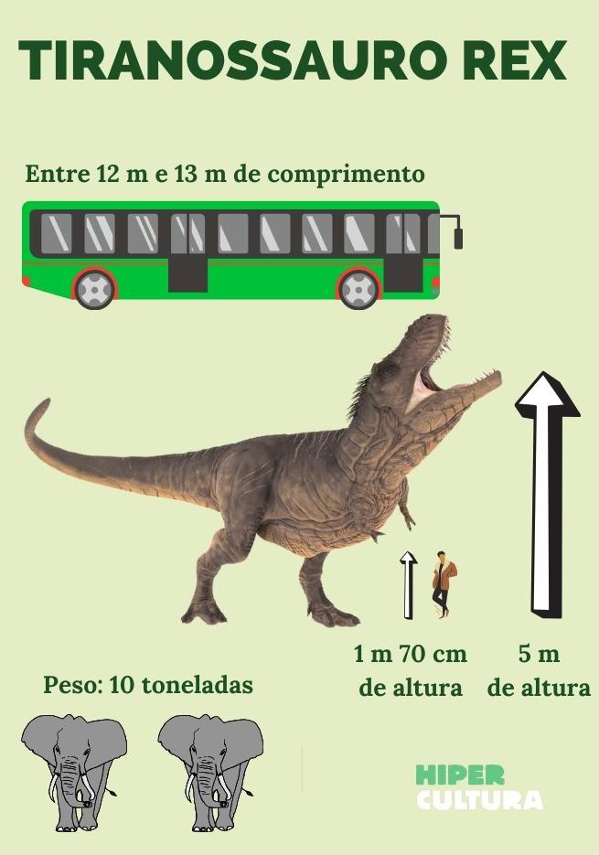 Esquema com informações sobre o tamanho e o peso do T. Rex