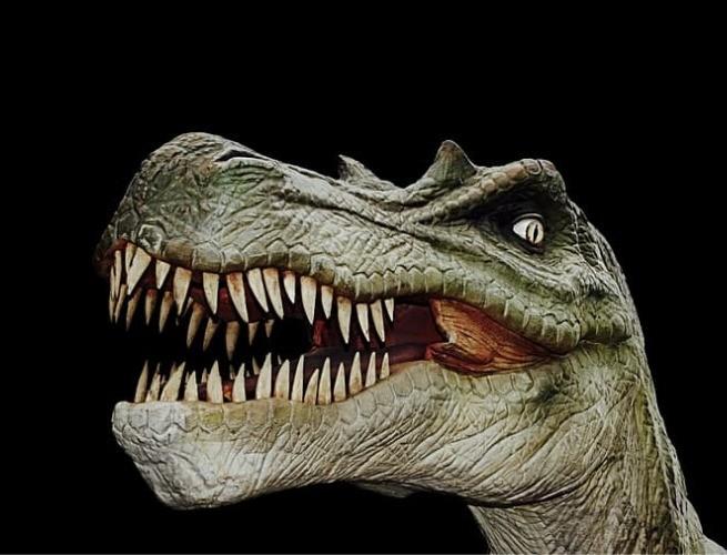 A boca cheia de dentes grandes do T. Rex (crédito: pikrepo)