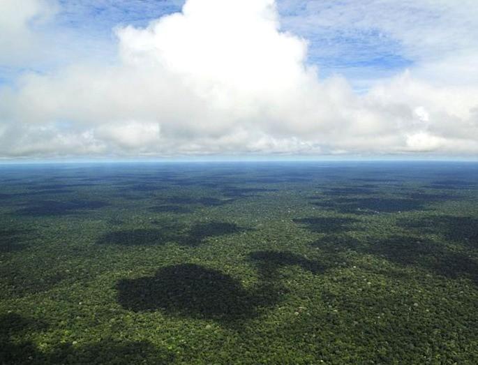 Vulcão Amazonas_Região Uatumã_ Hipercultura Foto- Neil Palmer (CIAT)